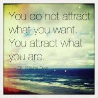 attract-what-you-want